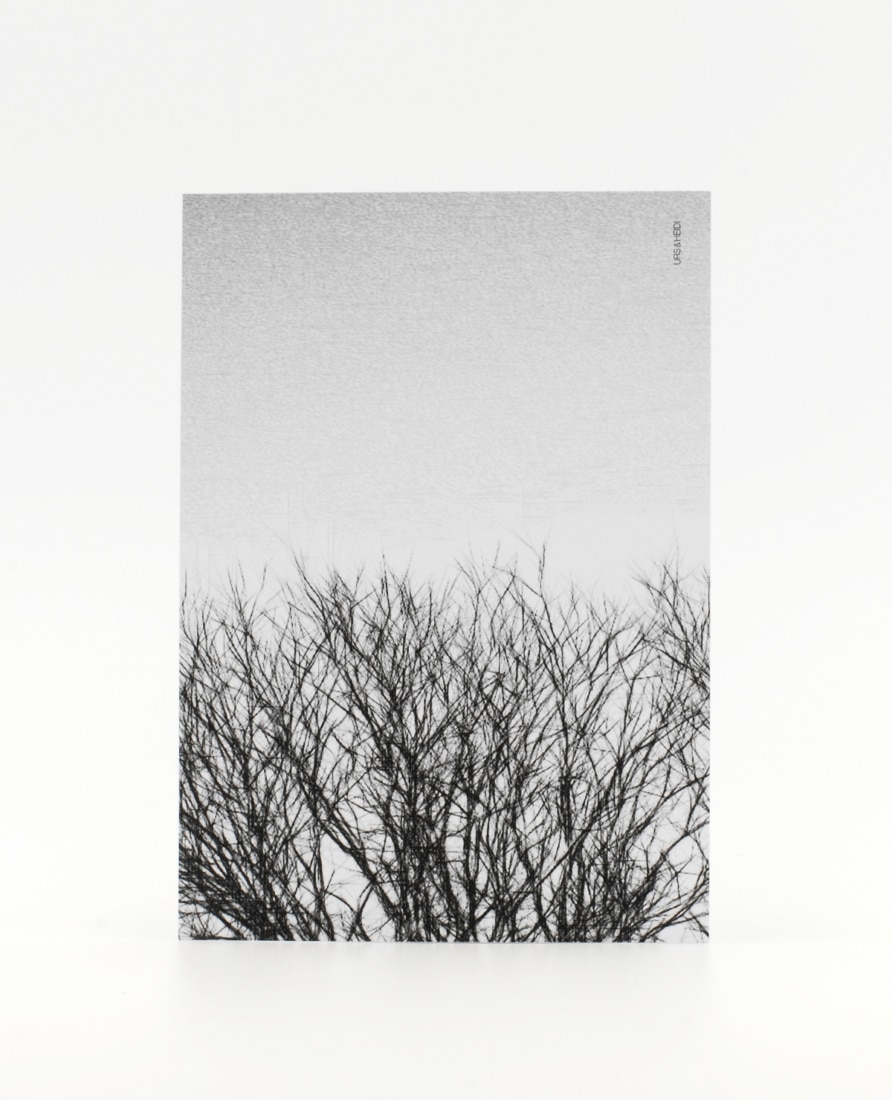 Postkarte Hecke