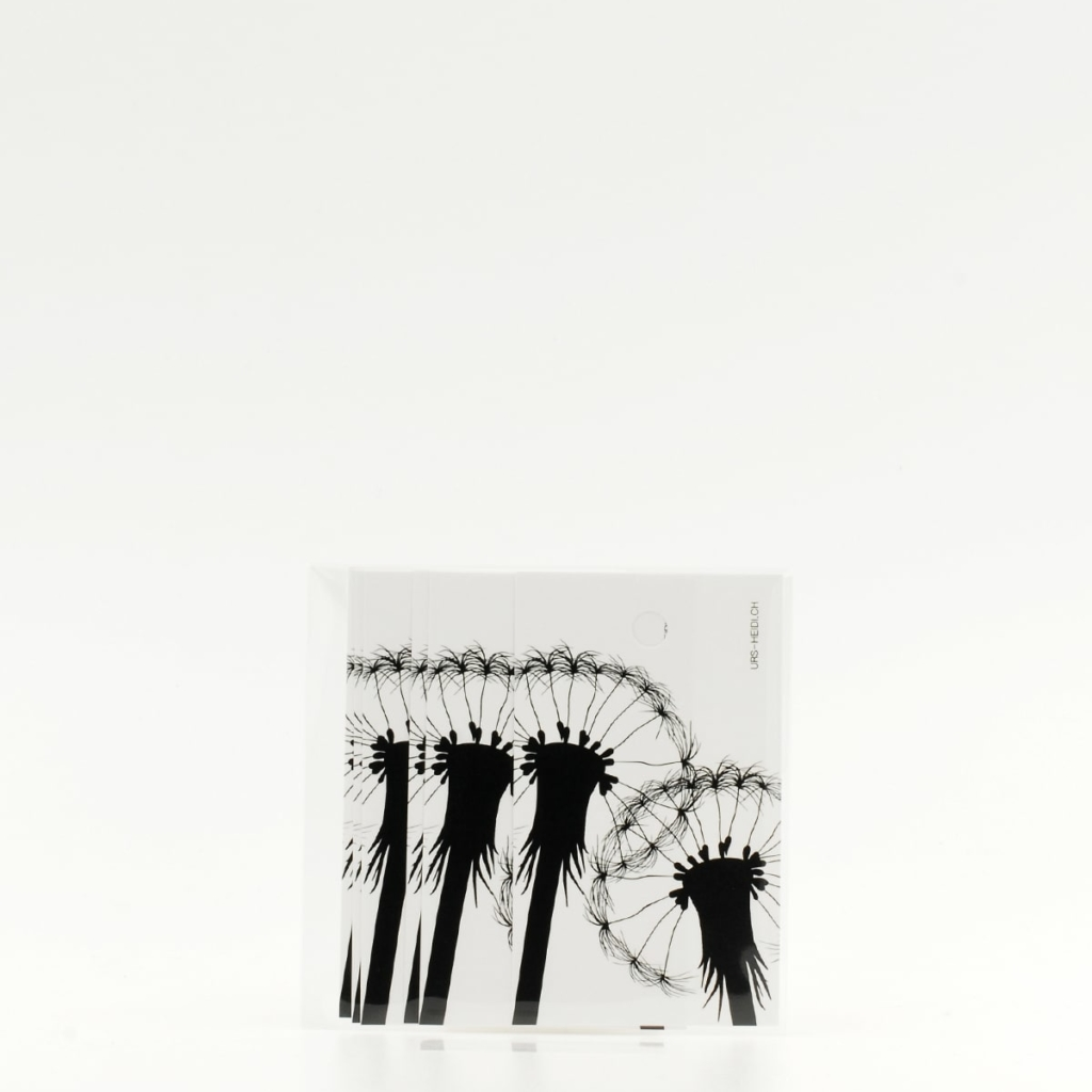 Anhänger für Geschenke, Illustration Silhouette Pusteblumen in schwarz 6 Stück