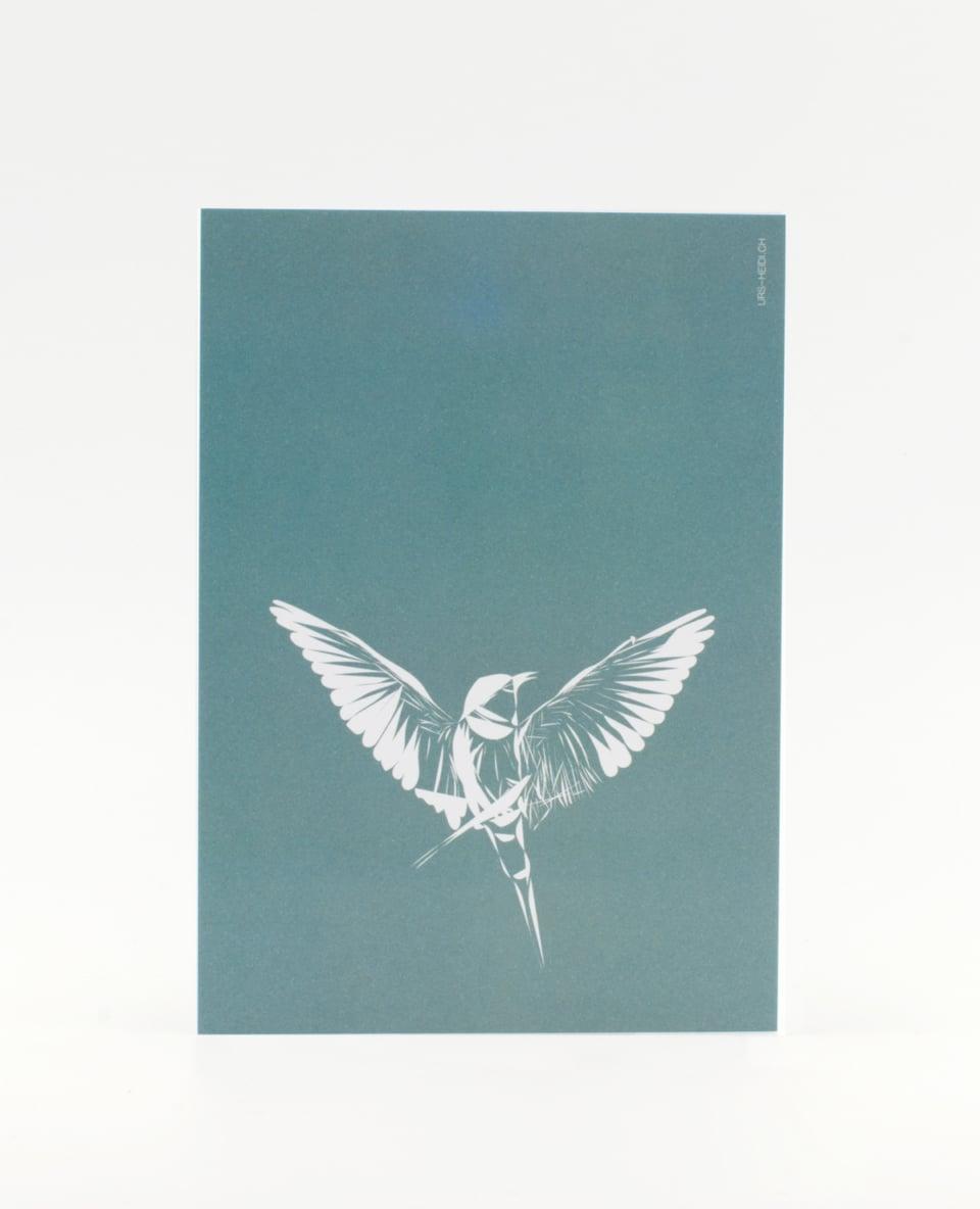 Postkarte Vogel auf Türkis Hintergrund